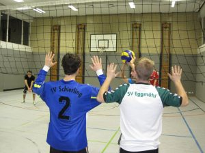 Volleyballer beim Training